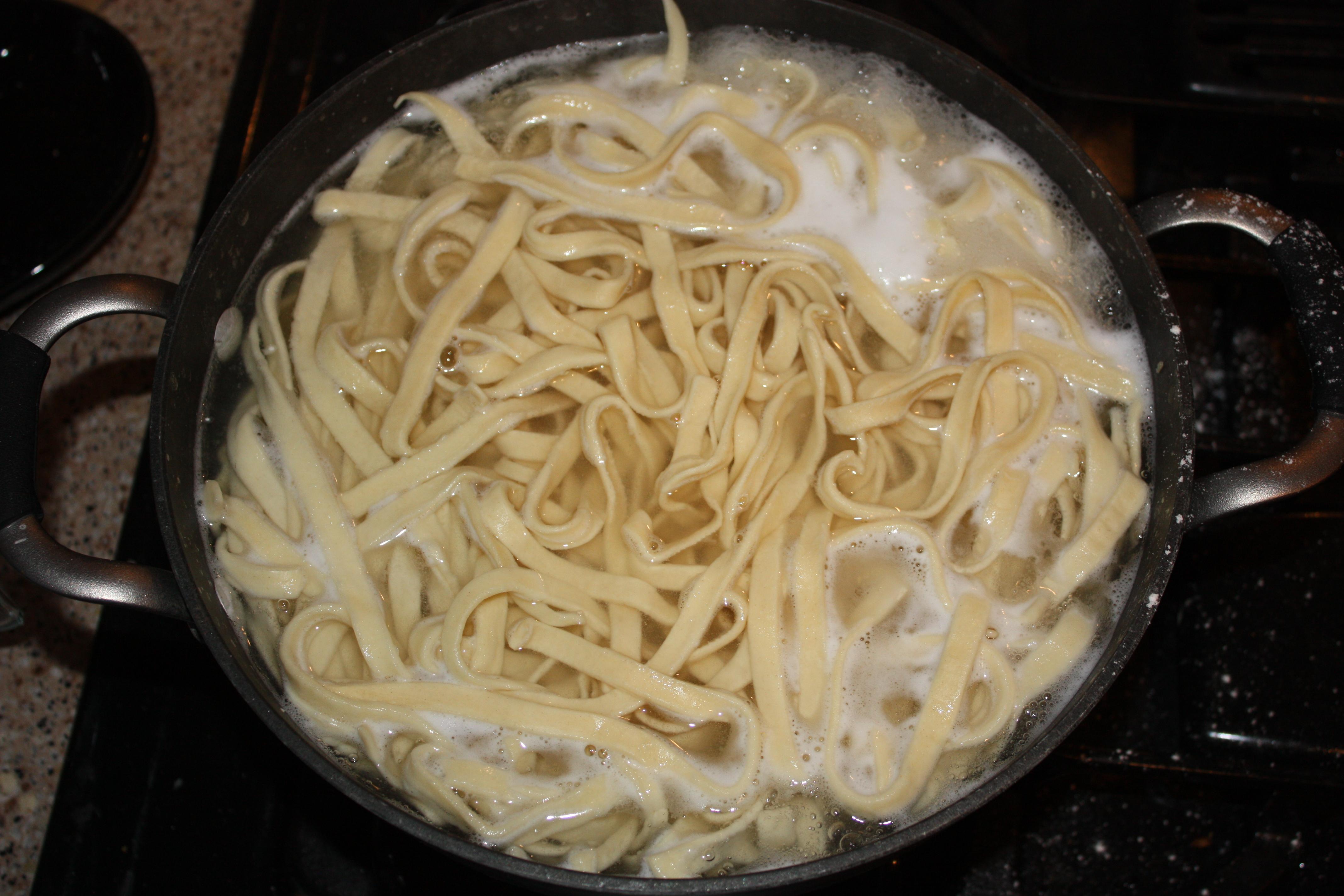 fante pasta machine