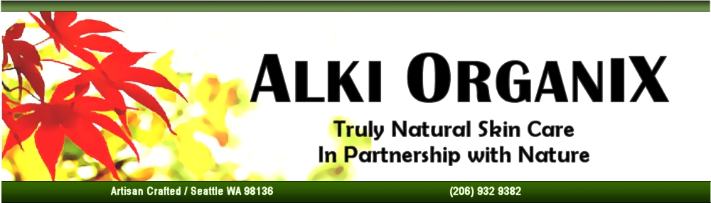 Web Banner with Green 1-26-13  v2